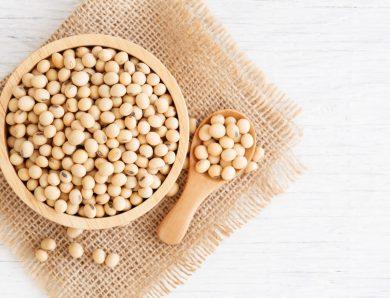 Le natto est un probiotique entièrement naturel qui combat les bactéries